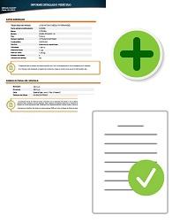 Informe DGT + Informe Bienes Muebles